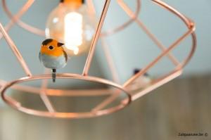 detail-lamp